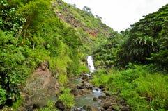 Waimea Falls Royalty Free Stock Images