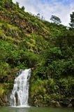 Waimea Falls Stock Photos