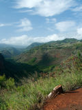 Waimea kanjonöverblick Arkivfoto