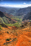 Waimea kanjon - Kauai - Hawaii Royaltyfri Fotografi