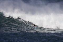 Waimea que practica surf Imagen de archivo libre de regalías