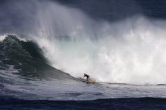 Waimea Schacht-Surfer Lizenzfreies Stockfoto