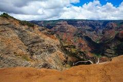 Waimea Schlucht, Kauai, Hawaii lizenzfreie stockfotografie