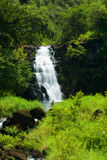 Waimea Waterfall Royalty Free Stock Photo