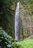 Waimoku baja (Maui, Hawaii) Imágenes de archivo libres de regalías