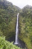Waimoku Falls, Maui, Hawaii. Vertical landscape view of Waimoku Falls, Maui, Hawaii stock image