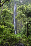 Waimoku Falls, Pipiwai trail, Kipahulu state park, Maui, Hawaii Stock Images