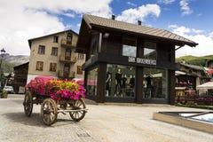 Wain con las flores delante de la moda hace compras en las calles del área con franquicia el 1 de agosto de 2016 en Livigno, Ital Fotos de archivo libres de regalías