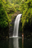 Wainibau瀑布在塔韦乌尼岛的Lavena沿海步行结束时 库存图片