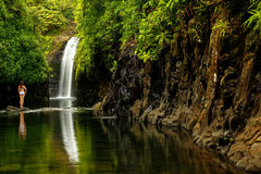 Wainibau瀑布在塔韦乌尼岛的Lavena沿海步行结束时 免版税库存图片