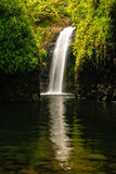 Wainibau Waterfall at the end of Lavena Coastal Walk on Taveuni Royalty Free Stock Image