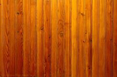 Wainscot Royalty Free Stock Images