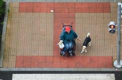 Wainting med en hund Royaltyfria Foton