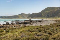 Wainuiomata Coast New Zealand. New Zealand shoreline in lower north island Royalty Free Stock Photo