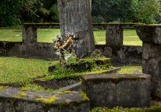 Waioli Huiia Mission Church in Hanalei Kauai Royalty Free Stock Image