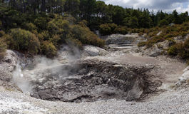 WaiOTapu Geothermal Wonderland, New Zealand Stock Image