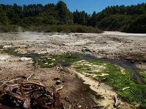 Waiotapu thermal area Stock Photography