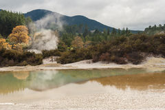 Waiotapu Thermal Park Royalty Free Stock Photography