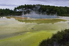 Waiotapu Thermal Pool. A wide angle shot of the geothermal lake known as Artist's Palette at Waiotapu, located near Rotorua on New Zealand's North Island Stock Photos