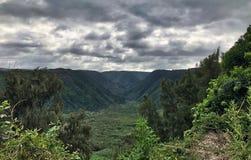 Waipi'o谷监视夏威夷 免版税库存图片