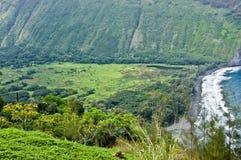 Waipi'o Valley Royalty Free Stock Image