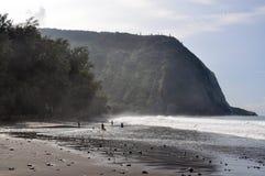 Waipio谷,海边有海滩视图 免版税库存图片