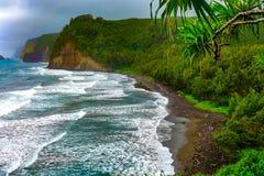 Waipio dolinna duża wyspa zdjęcie royalty free