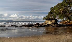 Waipu Beach.Northland. NZ Stock Images