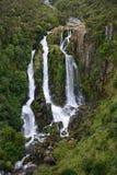Waipunga cade in Nuova Zelanda Immagine Stock
