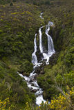 Waipunga Waterfall, New Zealand Royalty Free Stock Photo