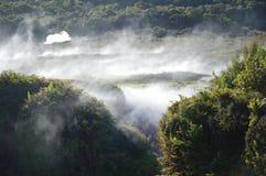 Wairakei地热驻地 库存图片