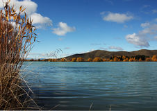 Wairepo Arm Lake. Near the small township of Twizel of the South Island, New Zealand Royalty Free Stock Photo