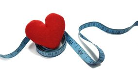Waist circumference affects the heart. Waist circumference should not exceed standard.Coronary artery disease royalty free stock photos