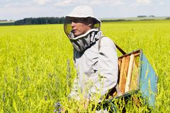 Young Apiarist Walking in Meadow stock image