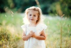A waist-up portrait of small girl in sunny summer nature. A waist-up portrait of cute small girl in sunny summer nature stock images
