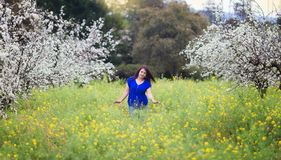 Waist up portrait of young woman in bright blue top in blossoming orchard and yellow mustard field, smiling, looking straight to t Royalty Free Stock Image