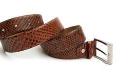waistband Royaltyfria Foton