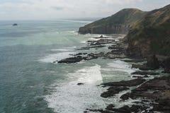 Waitakere выстраивает в ряд береговая линия Стоковые Фотографии RF