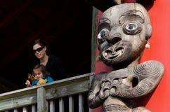 Waitakere områden - Nya Zeeland Fotografering för Bildbyråer