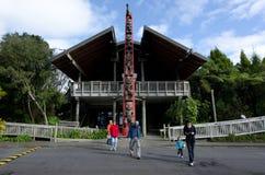 Waitakere områden - Nya Zeeland Royaltyfria Bilder