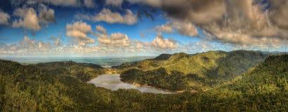 Waitakere strekt zich Regionaal Park Nieuw Zeeland uit royalty-vrije stock foto's