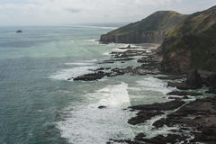 Waitakere varia litoral Fotos de Stock Royalty Free