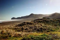 Waitakere varia parque nacional Imagens de Stock