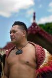 Waitangi日和节日-新西兰公休日2013年 库存照片