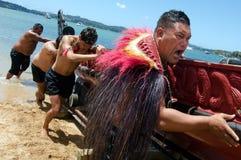 Waitangi Day and Festival - New Zealand Public Holiday 2013. WAITANGI - FEB 6:Maori warriors launch a war canoe during Waitangi Day on February 6 2013 in royalty free stock photography