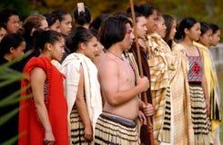 Waitangi Day - New Zealand Public Holiday Royalty Free Stock Images