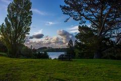 Waitangi Falls. Near to Auckland city, at east coast Royalty Free Stock Images