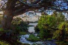 Waitangi Falls. Near to Auckland city, at east coast Royalty Free Stock Photo