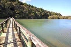 Waitangi river bridge, New Zealand. The track from the Waitangi Treaty Grounds to Haruru falls, crosses this bridge over the Waitangi river then Mangrove swamp stock photos