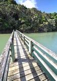 Waitangi river bridge, New Zealand. The track from the Waitangi Treaty Grounds to Haruru falls, crosses this bridge over the Waitangi river then Mangrove swamp royalty free stock image